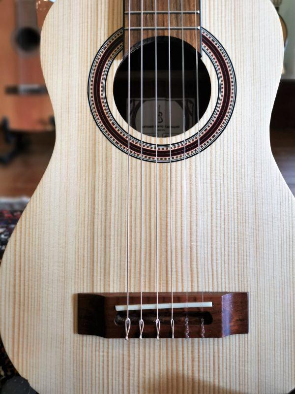 traveler guitar apc guitar 1000 NY apc 1